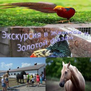 ekskursiya-v-zhashkov-i-zolotoy-phazan